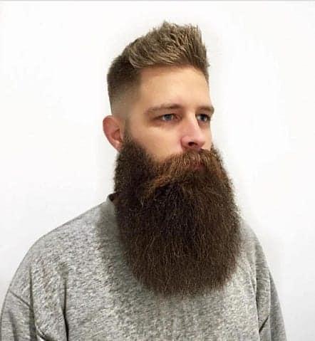 beard blog, beard tips, beard care, grooming tips, mens beard guide